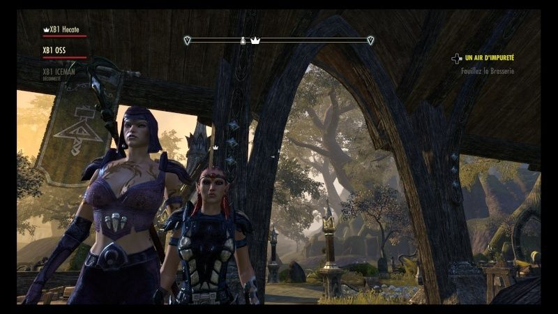 The Elder Scrolls Online : TESO - Nos personnages Teso_413