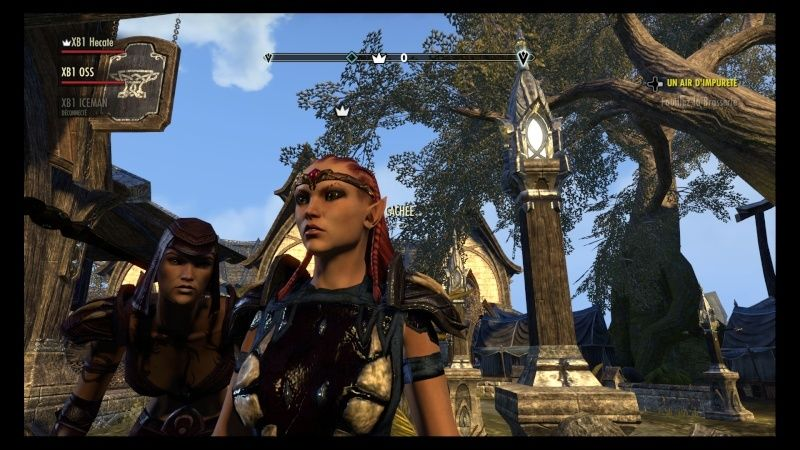 The Elder Scrolls Online : TESO - Nos personnages Teso_414