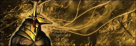 Luffy's Gallery Anubis10
