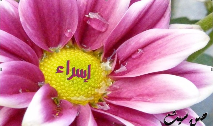 اسم إسراء في صورة  Downlo10
