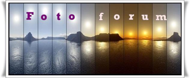 Foto-forum u slici - Page 5 12578010