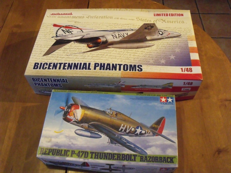 F-4 B Phantom 1/48° - VF-51 - 1972 - Début de patine. Dscf6344