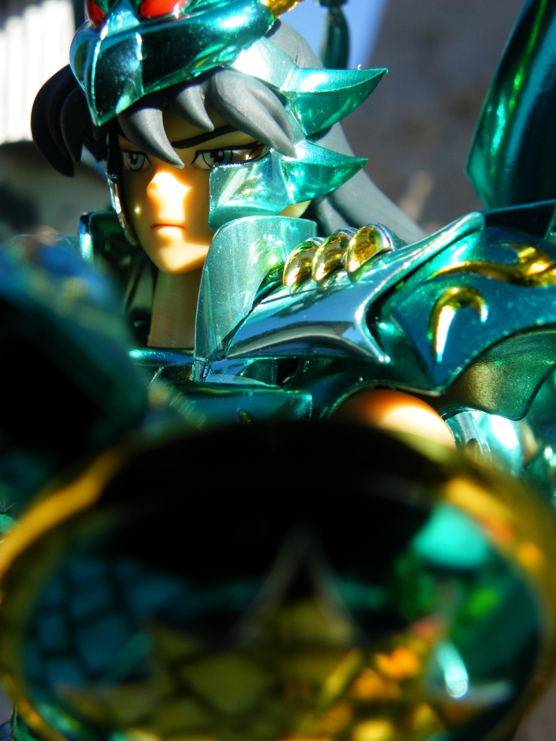 Vos photos de Shiryu Dragon v4 (Line' UP)  Antibe30