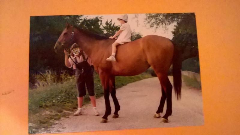 CONCOURS PHOTOS : le cheval et l'enfant - HOMMAGE !! - Page 2 Wp_20114