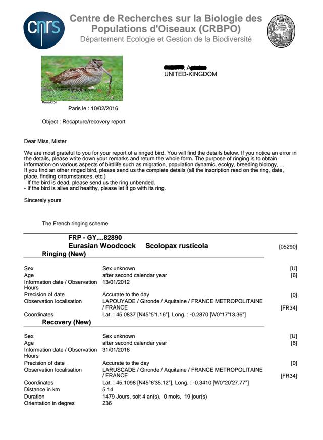 prelevement d'oiseau bague - Page 3 Becass10