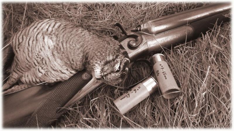 Fusil  Lefaucheux - Page 2 Dscf1810
