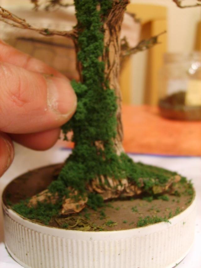 confection d'un arbre !! S5000317