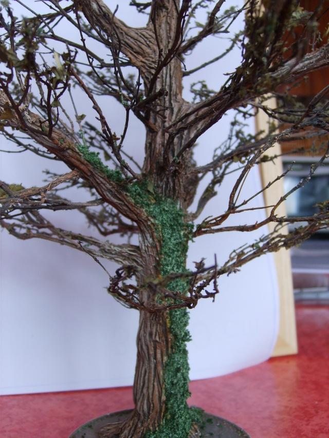confection d'un arbre !! S5000329