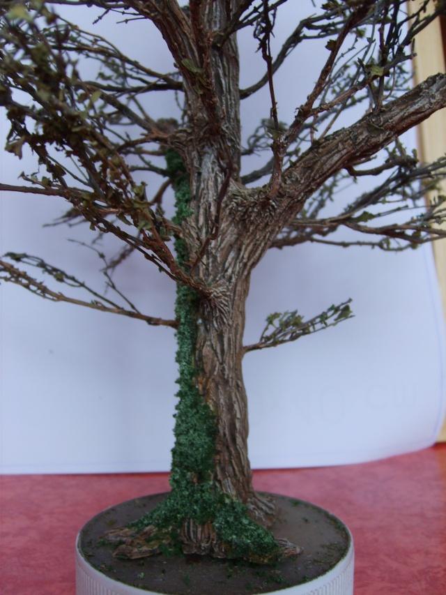 confection d'un arbre !! S5000331