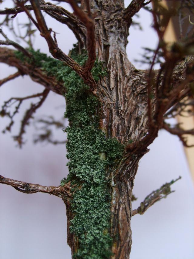 confection d'un arbre !! S5000332