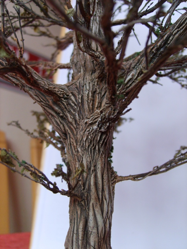 confection d'un arbre !! S5000333