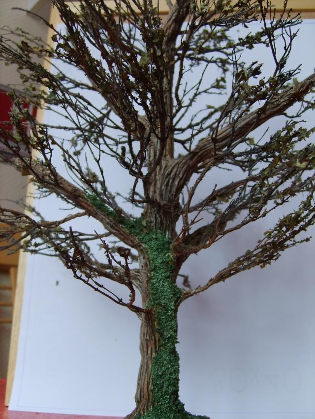 confection d'un arbre !! S5000335