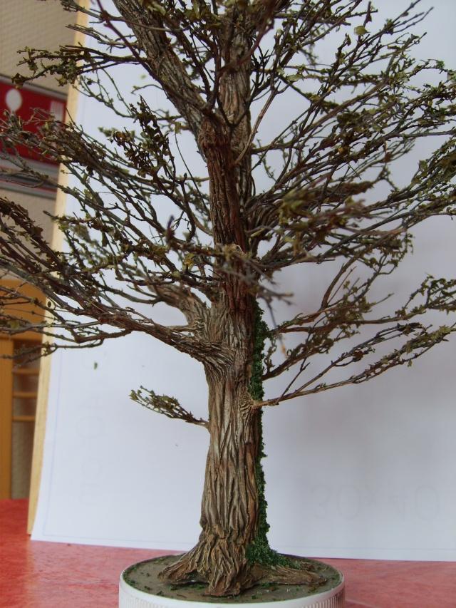 confection d'un arbre !! S5000336
