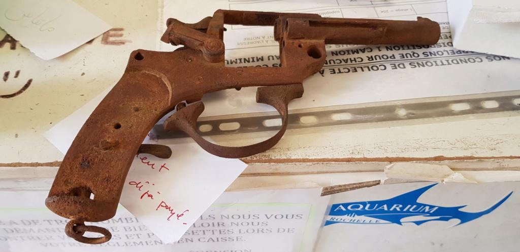 Aide pour revolver ??? 20190510