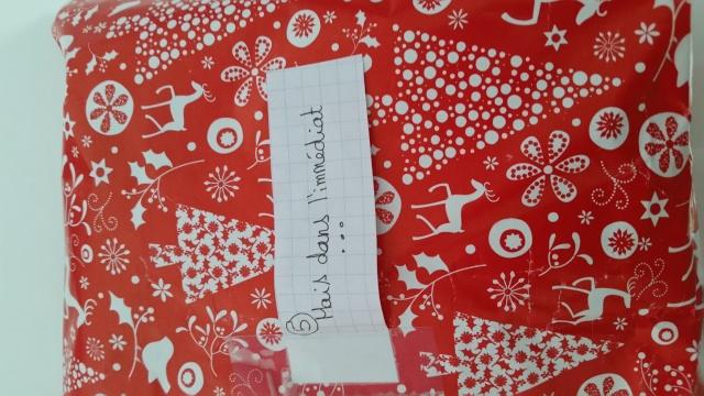 Père-Noël Surprise 2015 - Page 37 1310