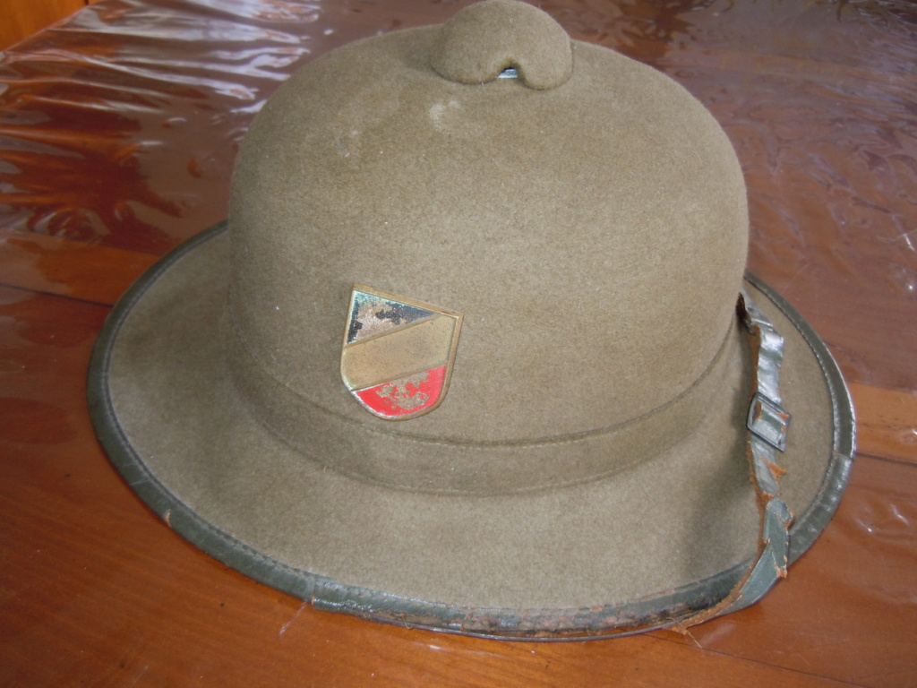 Casque Allemand colonial 2ème type Dscn8126