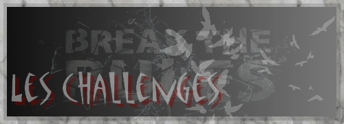 Le but des challenges Banner27