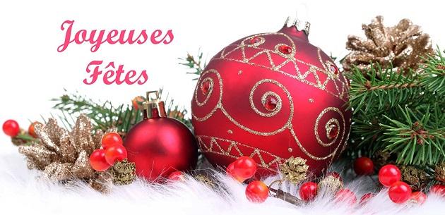 Bonnes fêtes de fin d'année ! Joyeus11