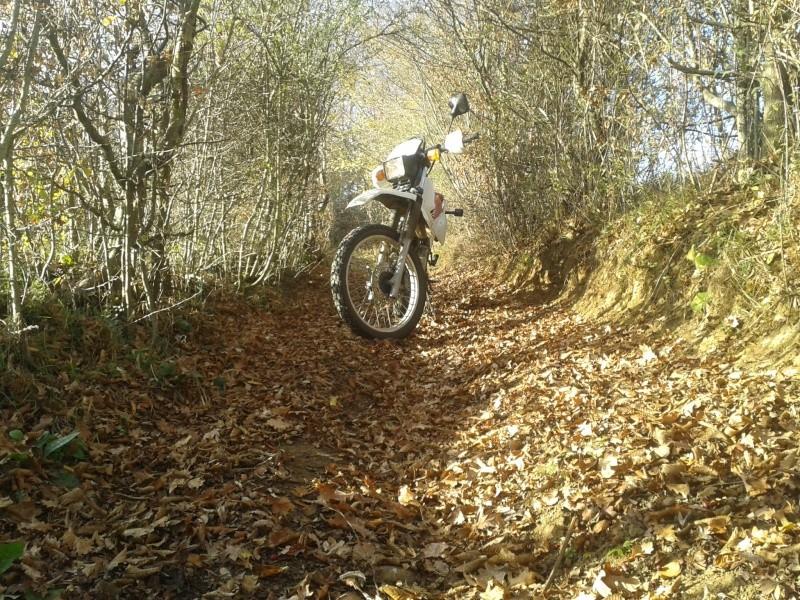 Automne, soleil => moto ! 20151118