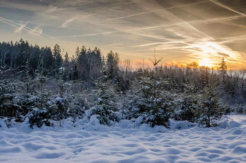 c'est froid mais c'est beau! Hiver_11