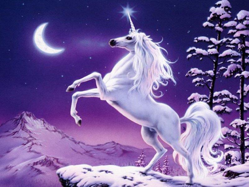 Licornes, centaures et chevaux ailés Bvpzle10