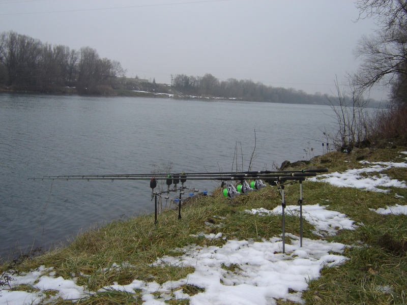 On pêche quoi en Février??Ça mord?? Dsc01810
