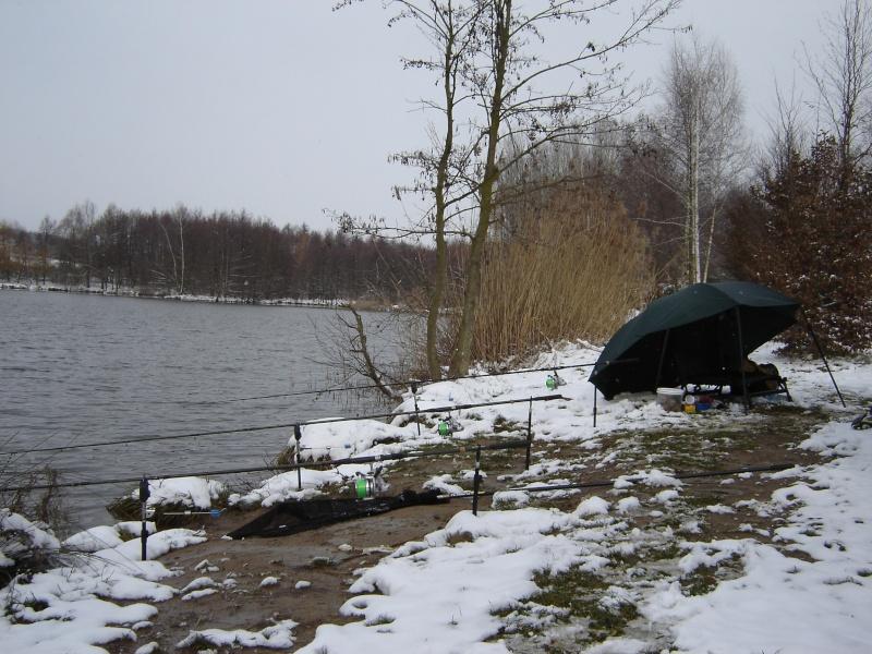 On pêche quoi en Février??Ça mord?? Dsc03510