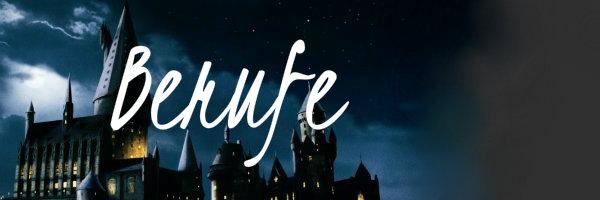 Berufe in der Zaubererwelt Berufe10