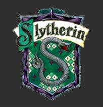 Vertrauensschüler & Quidditchteams  Sly12