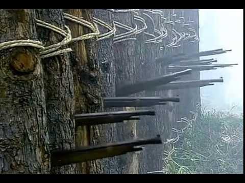 Bataille de Nagashino: ou la fin du clan Takeda Hqdefa10