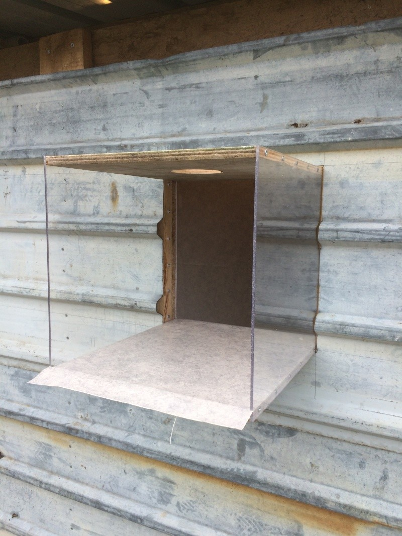 Construction pigeonnier avec récupération  Img_0625
