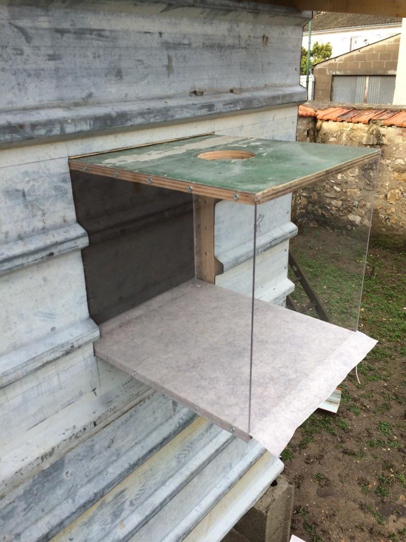 Construction pigeonnier avec récupération  Img_0626