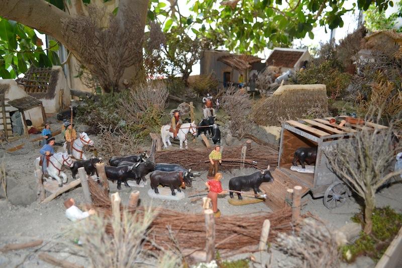 MA CRÈCHE DE NOEL 2015. LES SALINS, LA CAMARGUE, LA PROVENCE .... Dsc_0027