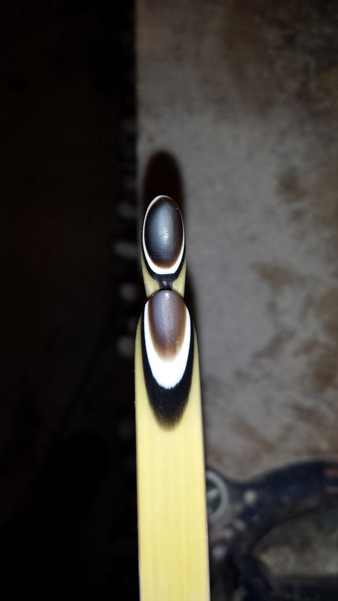 """Un nouveau Semi Longbow nommé """"Sapiens"""" 1_306_10"""