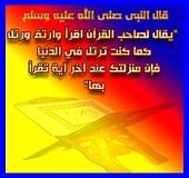 Forumactif.com : talibates 12210