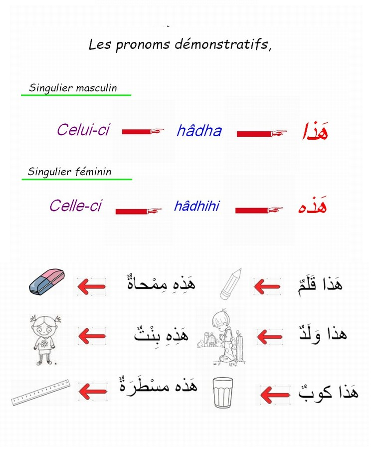 Groupe fracophone 1er année  - Page 4 Hada10