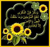 Forumactif.com : talibates Wawa_j10