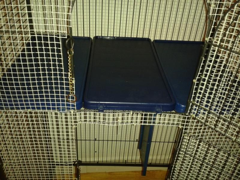 idées aménagement cage furet perfect ? 20151112