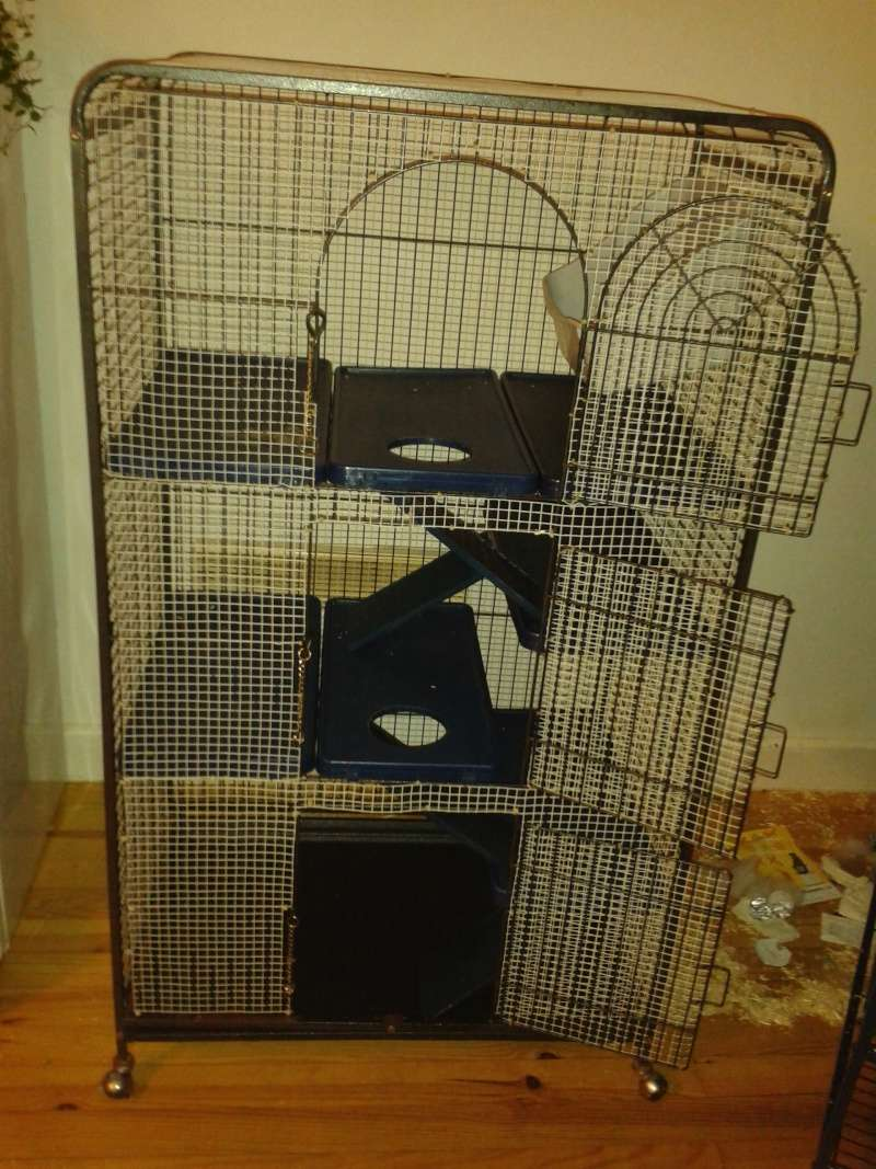 OYE, OYE ! Super grande cage furet, chinchilla... ET RATS !!! 20151210