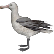 Topics tagged under africanadventure on User - Made Creations Albatr10