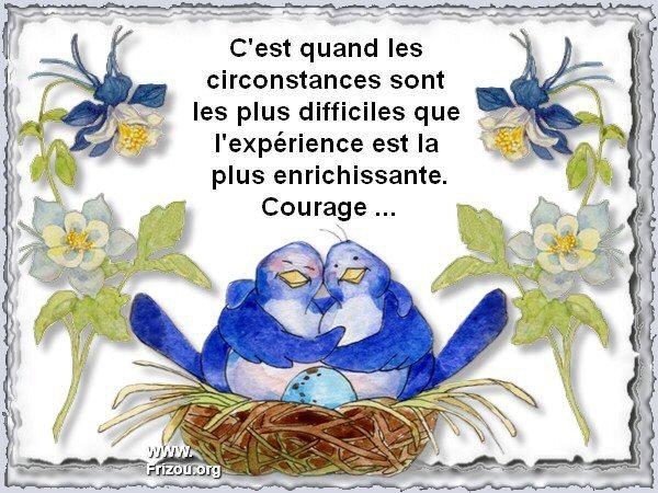 citation image C_est_13