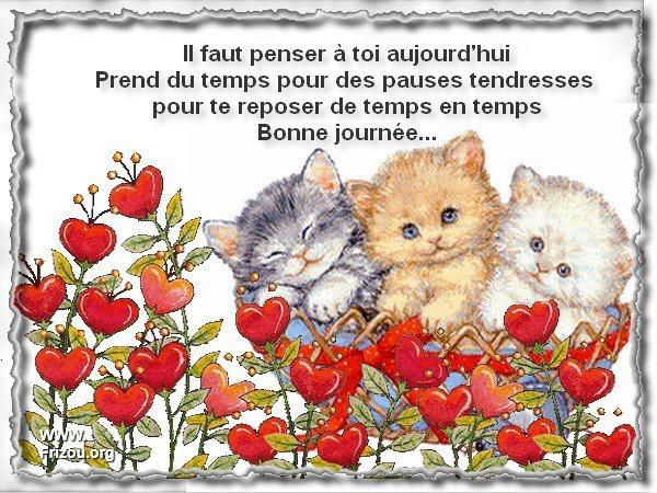 citation image Il_fau10