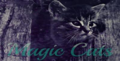 Magic Cats Vorlag12