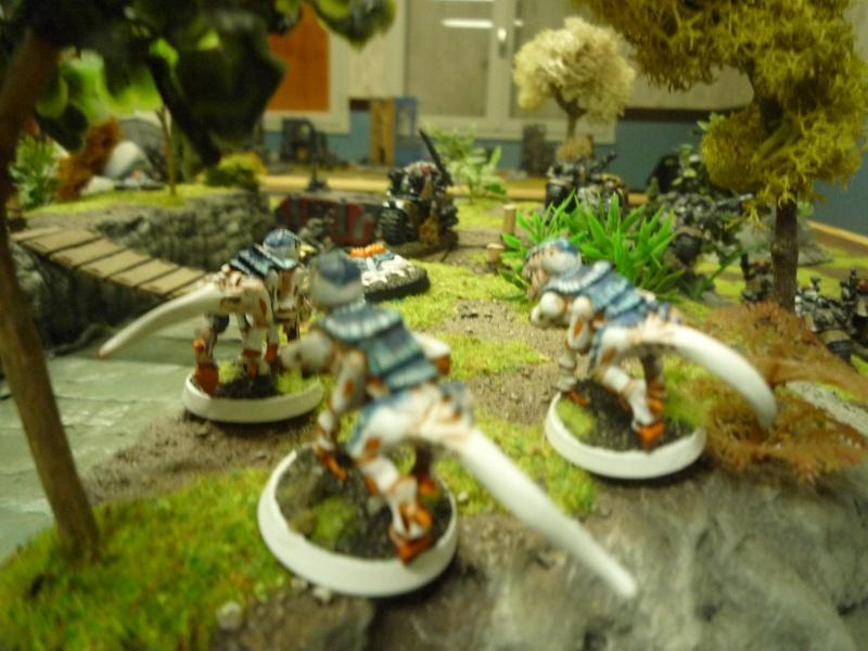 Apocalypse Angels et rapports de batailles Renard P1040022