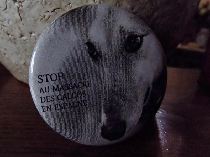 de beaux badges galgos offerts pour Scooby France  013_210