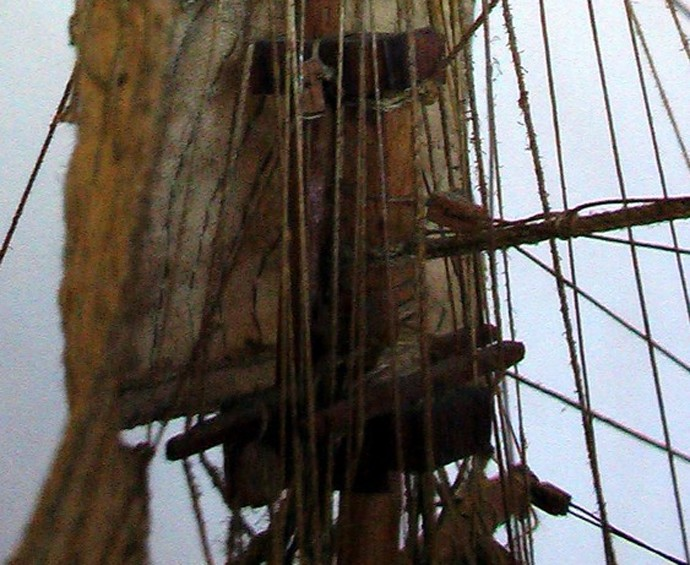 LA TOULONNAISE, goelette de 1823 au 1/75 par parellum, sous voiles, et photos Musée de la Marine Toul510