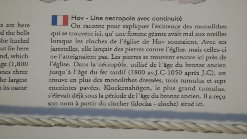 [Jeux] Les devinettes été/automne 2015 (Tome II) - Page 20 P8200511