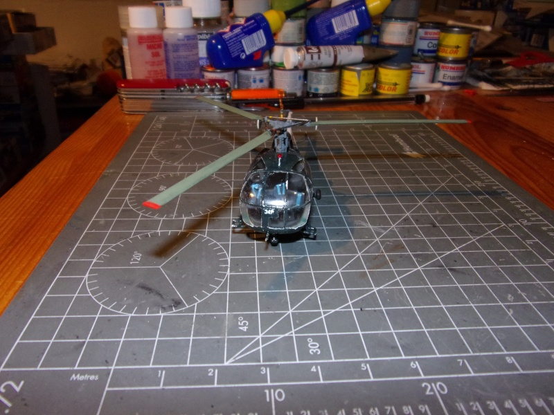 [1/72] Alouette III - Page 2 100_0713