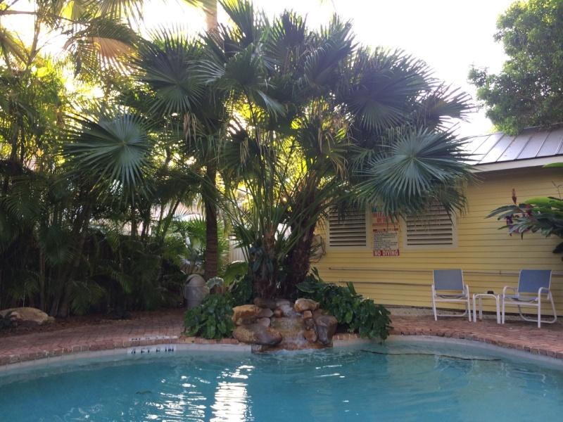 Road Trip Floridien : Le rêve de 2 soeurs - Du 4 au 21 Octobre 2015 (MAJ : 21/05/2017) - TR Terminé - Page 6 Img_3411