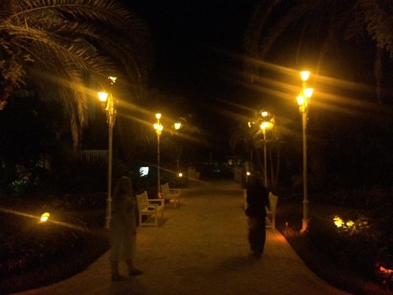 Road Trip Floridien : Le rêve de 2 soeurs - Du 4 au 21 Octobre 2015 (MAJ : 21/05/2017) - TR Terminé - Page 6 Img_3416